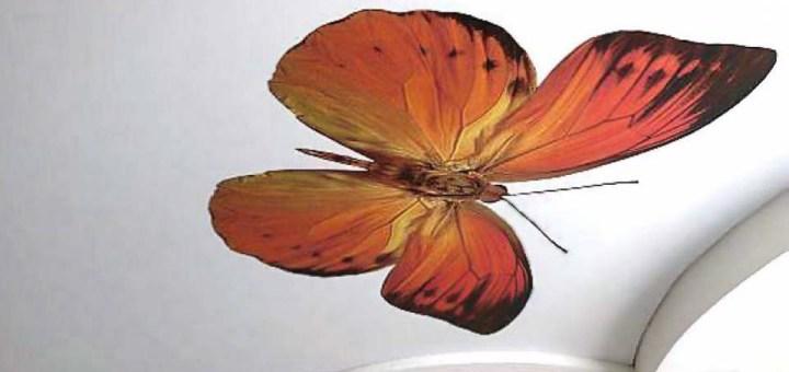 натяжной потолок бабочка1